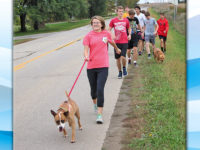 Dogs boost training