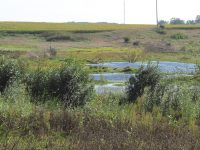 Lekwa Marsh is subject of DNR open house
